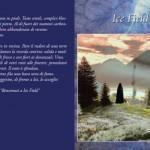 La copertina del libro Ice Field